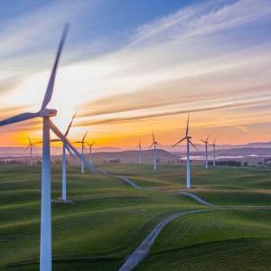 Điện gió đang mang đến làn gió mới cho thị trường năng lượng
